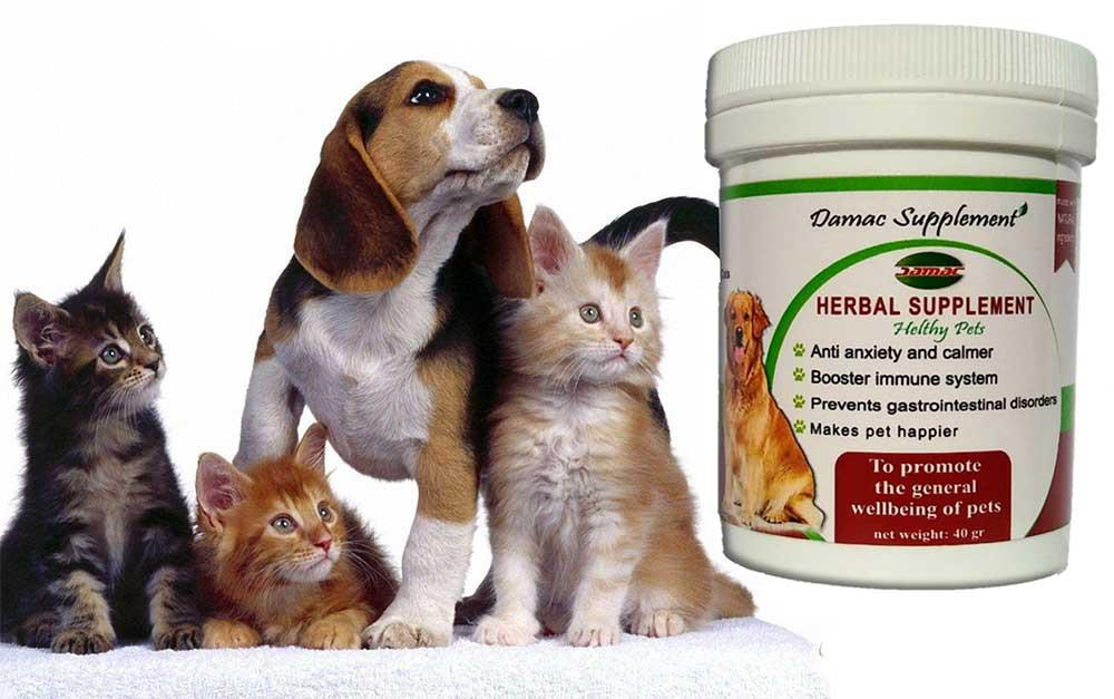 مکمل گیاهی تقویتی سگ و گربه داماک