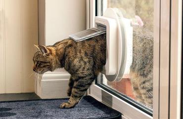 cat flap درب مخصوص ورود حیوانات خانگی