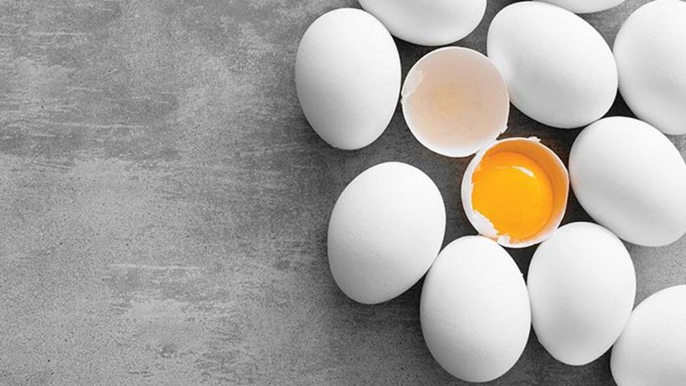 تاثیر اسیدهای چرب دارای رنجیره متوسط بر کیفیت تخم مرغ