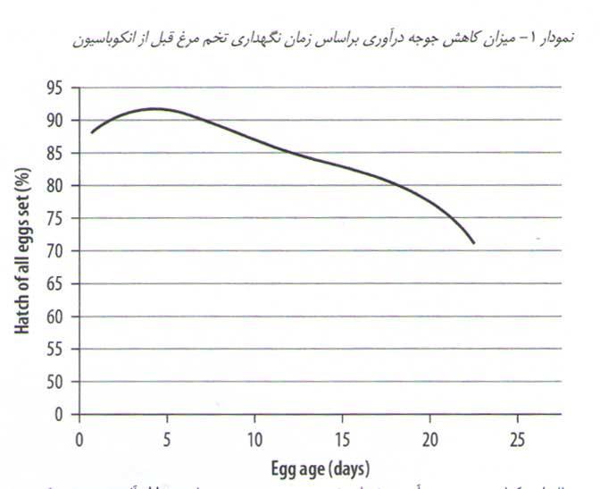 میزان کاهش جوجه درآوری براساس زمان نگهداری تخم مرغ قبل از انکوباسیون