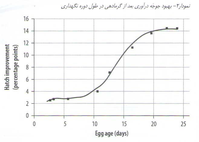 بهبود جوجه درآوری بعد از گرمادهی در طول دوره نگهداری