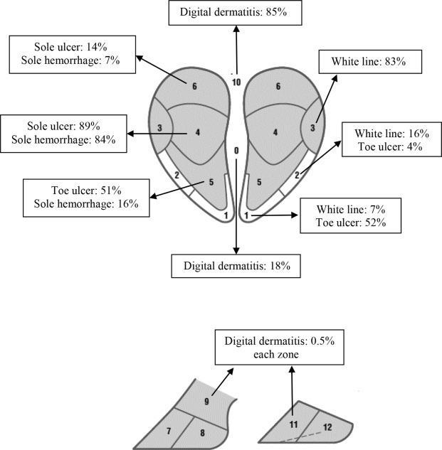 مشخصات سم گاو