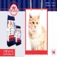غذای گربه بالغ امپریال