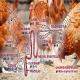 اثر ضد میکروبی اسیدهای آلی بر فلور میکروبی و سلامت روده طیور