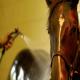 مدیریت استرس گرمایی در اسب ها