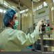 تولید انواع واکسن های دامی در موسسه سرم و واکسن رازی