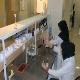تولید ۵ قلم داروی جدید دامی و ۲ قلم ماده اولیه دارویی