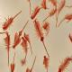 کاربرد آرتمیا (میگوی آب شور) در تغذیه ماهی و میگو