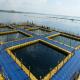 پرورش ماهی در قفس (بخش سوم)