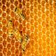 هشدار! عسل تقلبی نخرید