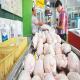 طرح کاهش سن و وزن کشتار مرغ گوشتی در اردبیل اجرا شد