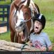 اسب ها و انسان ها از حالات چهره یکسانی برای بیان احساسات استفاده می کنند