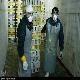 مرغ های تخم گذار آلوده به آنفلوآنزا معدوم شدند