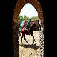 روستای ورکانه مرکز پرورش اسب های اصیل ایرانی