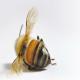 حشرات مفید برای کشاورزی و اکوسیستم درحال انقراض هستند