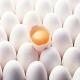 تخممرغ در ۳ روز ۸۰۰ تومان گران شد