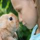 بیماری های قابل انتقال از خرگوش