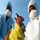 آنفلانزای طیور (Avian Influenza)(بخش اول)
