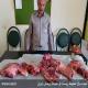 فروش گوشت خوک وحشی بجای گوشت گاو