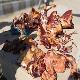 تشخیص گوشت الاغ در گوشت چرخ شده
