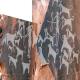 دگرگونی تاریخچه اهلی کردن سگ با کشف چند غارنگاره