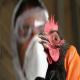تدابیر نظارتی جدید برای مقابله با انفولانزای مرغی
