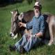 شاخ گاوها و بزها، موضوع همه پرسی سوئیس