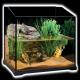 محل نگهداری لاکپشت (تراریوم)