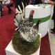 گزارش تصویری از نمایشگاه دام، طیور و ماشینآلات کشاورزی در تبریز