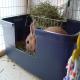 مراحل آموزش دستشویی رفتن به خرگوش