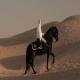 تعلیم اسب عرب