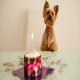محاسبه سن سگ ها برچه پایه ایست؟