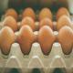 پوسته تخم مرغ باکیفیت، با مصرف افزودنی ها