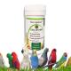 مکمل تقویتی پرندگان زینتی داماک
