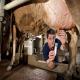 روش های تشخیص ورم پستان در گاوهای شیری